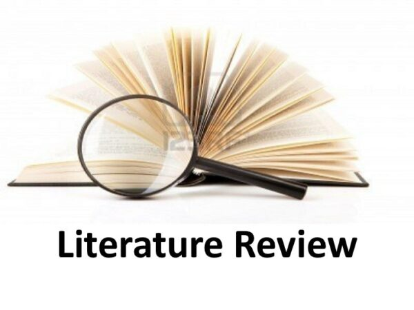 literature review writing services in uae
